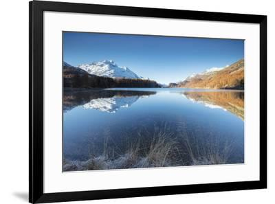 The snowy peaks and colorful woods are reflected in Lake Champfer, St. Moritz, Canton of Graubunden-Roberto Moiola-Framed Photographic Print