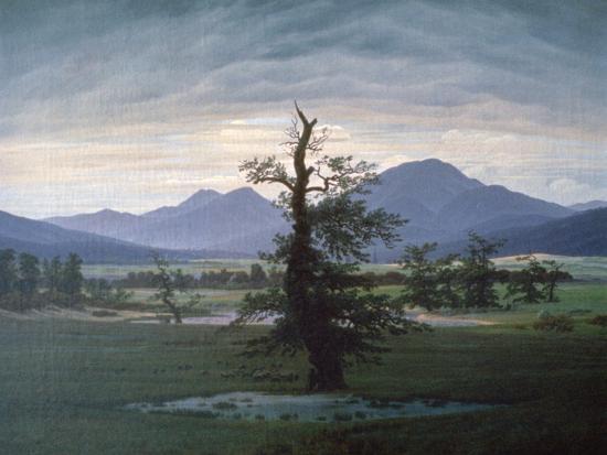 The Solitary Tree, 1823-Caspar David Friedrich-Giclee Print