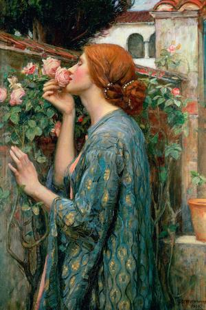 https://imgc.artprintimages.com/img/print/the-soul-of-the-rose-1908_u-l-q1g8eec0.jpg?p=0