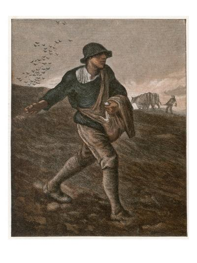 The Sower--Giclee Print