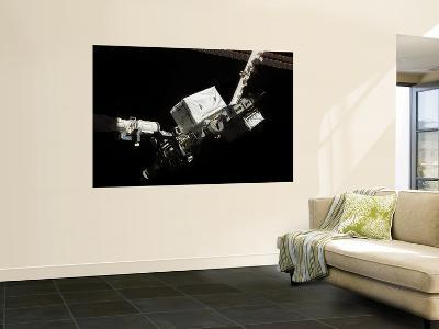 The Space Shuttle Endeavour's Remote Manipulator System (RMS) Robotic Arm August 14, 2007--Wall Mural