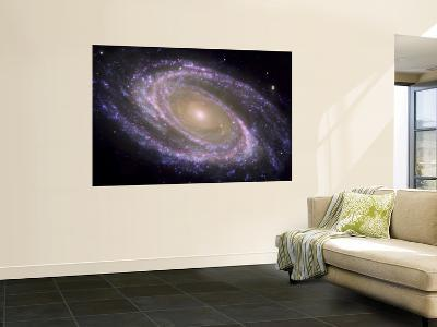 The Spiral Galaxy Known as Messier 81--Wall Mural