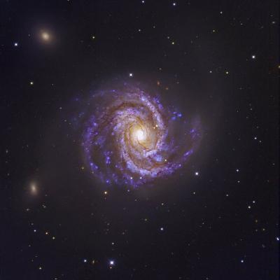 The Spiral Galaxy M100 and Supernova Sn2006X-Robert Gendler-Photographic Print
