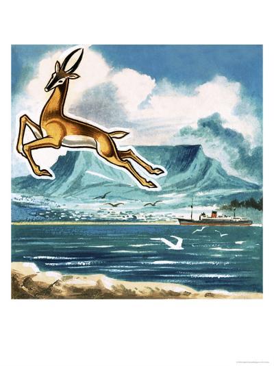 The Springbok, Emblem of South Africa--Giclee Print
