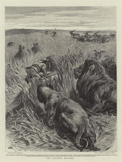 The Stalker Stalked-John Charlton-Giclee Print