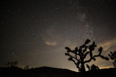 The Star-Filled Night Sky over Lost Horse Valley in Joshua Tree National Park-Kent Kobersteen-Photographic Print
