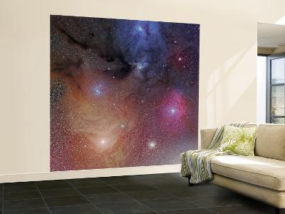 The Starforming Region of Rho Ophiuchus--Wall Mural – Large