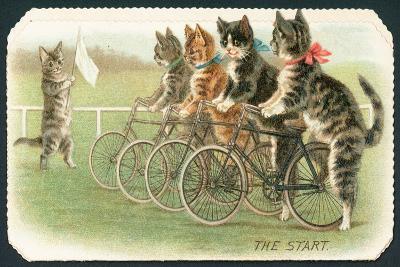 The Start, Cat Cycle Race, Christmas Card-English School-Giclee Print