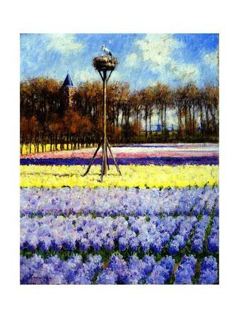 https://imgc.artprintimages.com/img/print/the-stork-s-nest-holland_u-l-ppck9a0.jpg?p=0