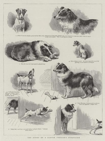 The Story of a Clever Terrier's Stratagem--Giclee Print