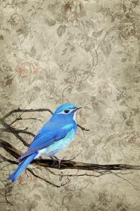 Blue Bird by THE Studio