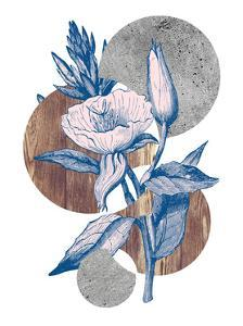 Botanical Studies 2 by THE Studio