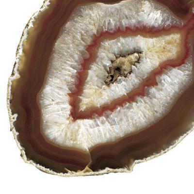 Earth Agate D by THE Studio