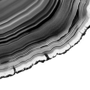 Grey Agate F by THE Studio