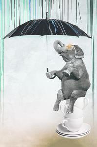 Raining Colors by THE Studio
