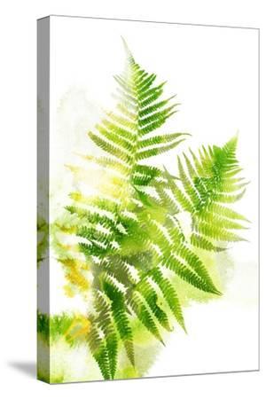 Watercolor Botanicals 3