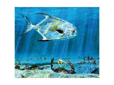 The Sun King: Permit Worshipped by Crabs-Stanley Meltzoff-Giclee Print