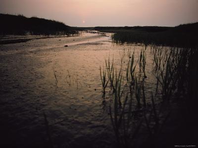 The Sun Rises over a Salt Marsh in Maine-Bill Curtsinger-Photographic Print