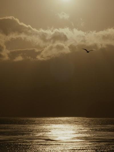 The Sun Sets over the Pacific Ocean off the Coast of Shell Beach-Marc Moritsch-Photographic Print