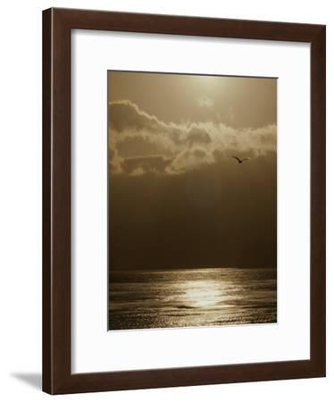 The Sun Sets over the Pacific Ocean off the Coast of Shell Beach-Marc Moritsch-Framed Photographic Print