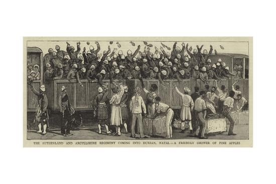 The Sutherland and Argyllshire Regiment Coming into Durban, Natal, a Friendly Shower of Pine Apples--Giclee Print