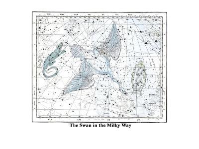 The Swan in the Milkyway-Alexander Jamieson-Art Print