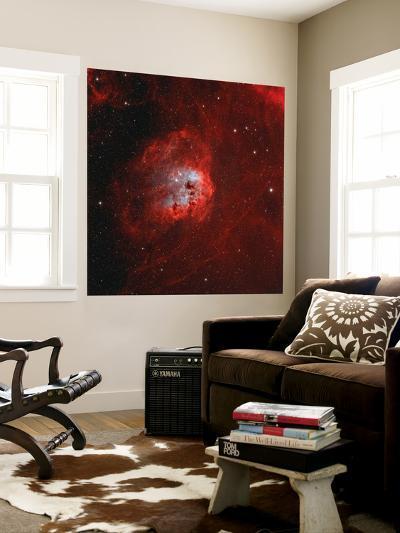 The Tadpole Nebula-Stocktrek Images-Wall Mural