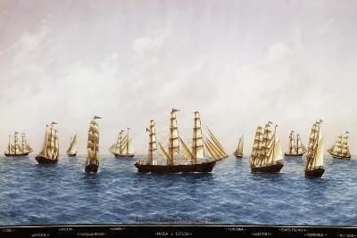 The Tall Ships of Shipowners Matarazzo from Gaeta, Watercolour by Papaluca (1890-1934), Italy--Giclee Print