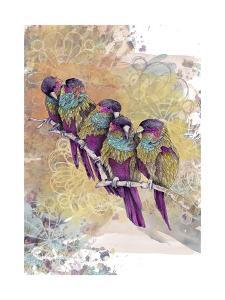 Purple Parrots by The Tangled Peacock