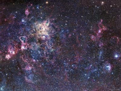 The Tarantula Nebula-Stocktrek Images-Photographic Print