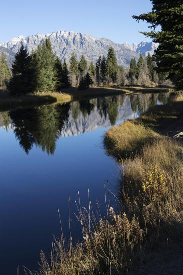 The Teton Range and Evergreen Forests, and their Reflections in the Snake River-Marc Moritsch-Photographic Print