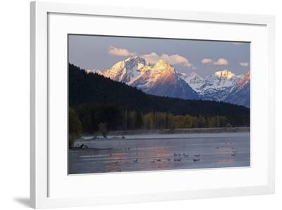 The Teton Range and the Snake River at Sunrise. a Flock of Canada Geese Rest in the River-Marc Moritsch-Framed Photographic Print