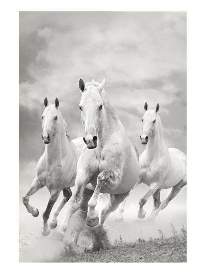 The Three Graces--Art Print
