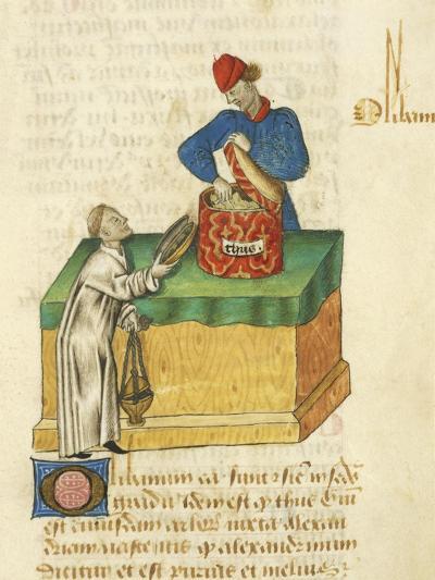 The Thyme Seller--Giclee Print