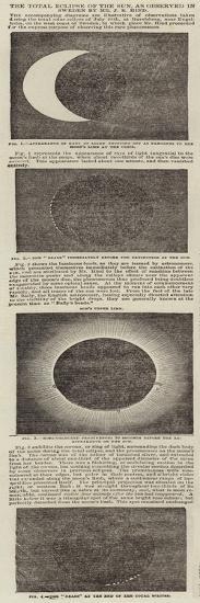 The Total Eclipse of the Sun, as Observed in Sweden by Mr J R Hind--Giclee Print