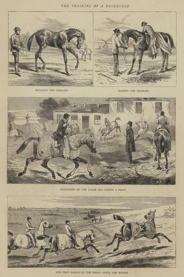 The Training of a Racehorse--Giclee Print