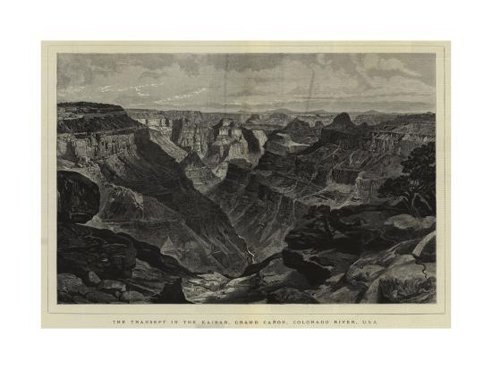 The Transept in the Kaibab, Grand Canon, Colorado River, Usa--Giclee Print