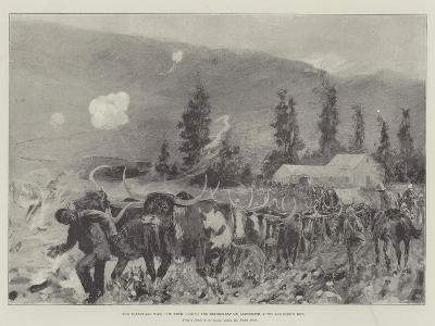 The Transvaal War, Ox Team During the Retirement on Ladysmith after Lombard's Kop-Henry Charles Seppings Wright-Giclee Print