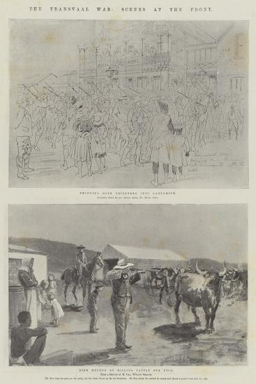 The Transvaal War, Scenes at the Front-Melton Prior-Giclee Print