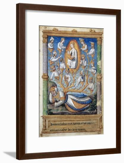 The Tree of Jesse--Framed Giclee Print