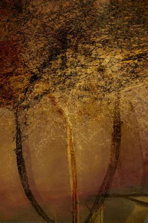 https://imgc.artprintimages.com/img/print/the-trees-of-life-ii_u-l-q1gvku10.jpg?artPerspective=n