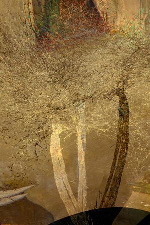 https://imgc.artprintimages.com/img/print/the-trees-of-life-iv_u-l-q1gvkxe0.jpg?p=0