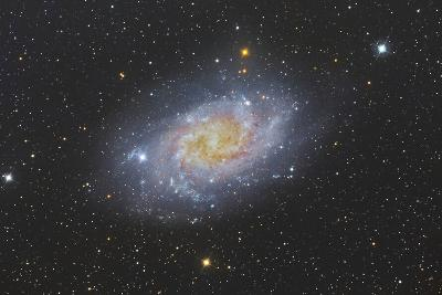 The Triangulum Galaxy, also known as Messier 33--Photographic Print