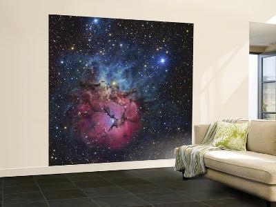 The Trifid Nebula--Wall Mural – Large