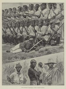 The Troubles in Madagascar, Types of Native Soldiery