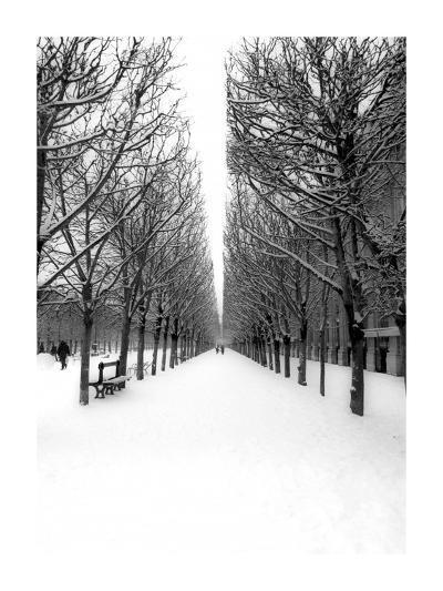 The Tuileries Garden under the snow, Paris-Michel Setboun-Giclee Print