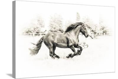 The Two Friends-Sebastian Graf-Stretched Canvas Print