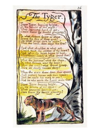 https://imgc.artprintimages.com/img/print/the-tyger-plate-36-bentley-42-from-songs-of-innocence-and-of-experience-bentley-copy-l_u-l-pg5p9r0.jpg?p=0