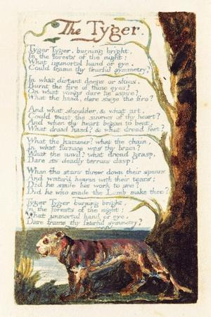 https://imgc.artprintimages.com/img/print/the-tyger-plate-41-from-songs-of-experience-1794_u-l-pljcho0.jpg?artPerspective=n