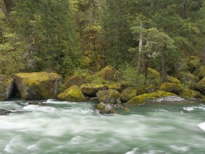 The Umpqua River, Oregon, USA-William Sutton-Photographic Print